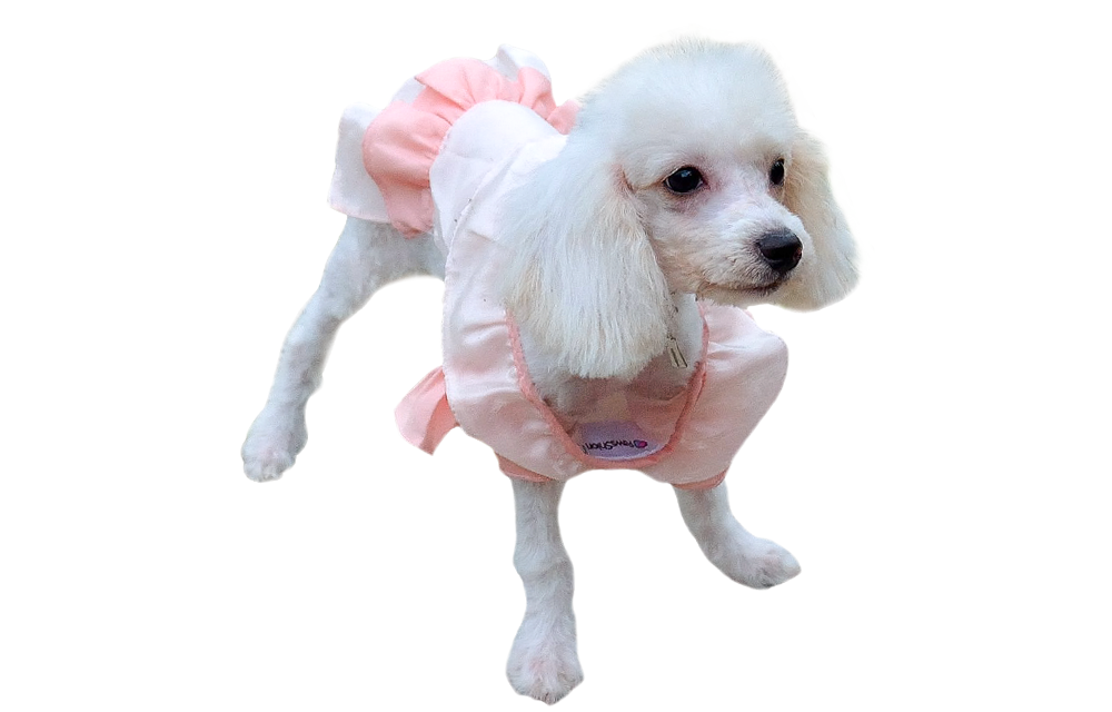 кесарево сечение у собак